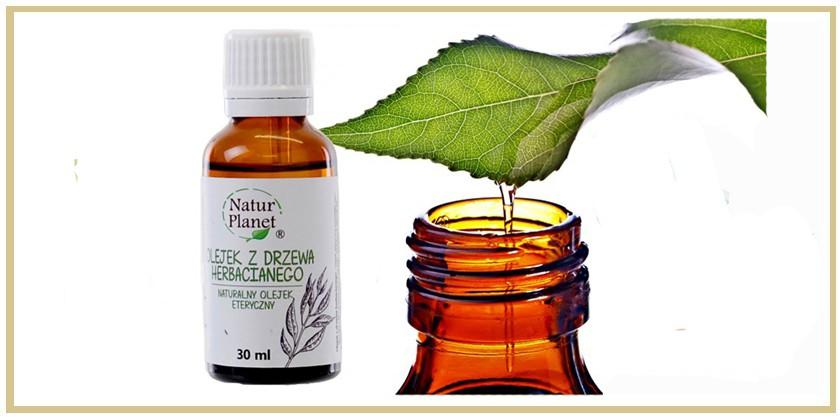 Olejek z drzewa herbacinaego zastosowanie
